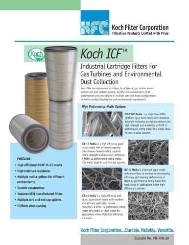 Koch ICF