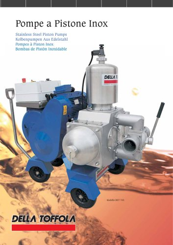 Stainless Steel Piston Pumps