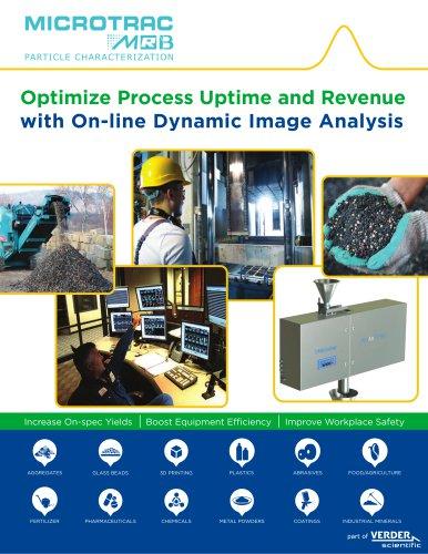 On-line Dynamic Image Analysis