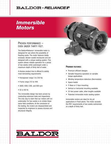 Immersible Motors