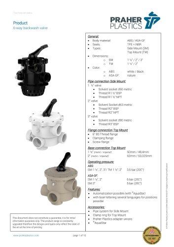 6-way backwash valve