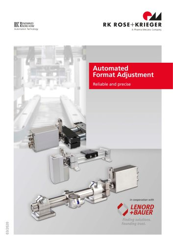 Automated Format Adjustment