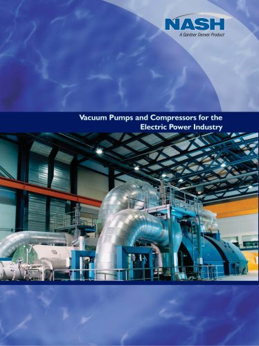 Vacuum Pumps and Compressors for the Electric Power Industry