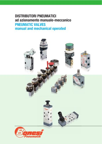 Pneumatic valves manual and mechanical operated
