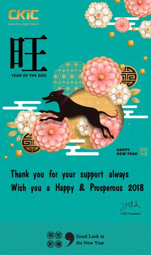 Wish you have a Happy New Year 2018!