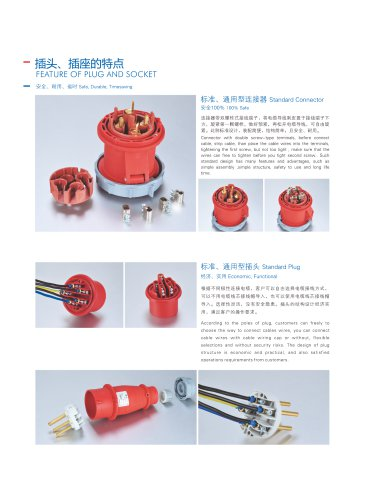 Feature of plug and socket