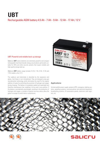 Rechargeable AGM battery