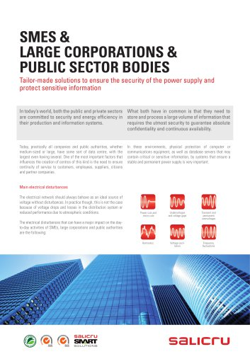 Smes, large corporations and public sector bodies