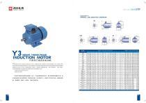 Three Phase/Single Phase AC Electric Motor - 11