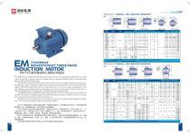 Three Phase/Single Phase AC Electric Motor - 13