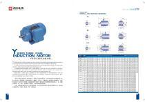 Three Phase/Single Phase AC Electric Motor - 7