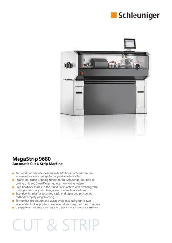 MegaStrip 9650 Datasheet