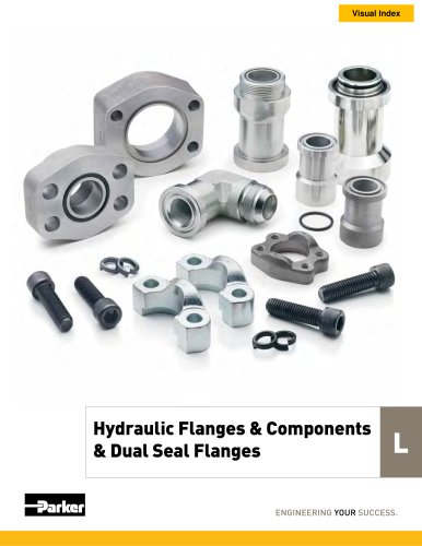 Hydraulic Flanges & Components & Dual Seal Flanges