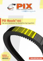 PIX-Muscle-XR3 Belts - 1