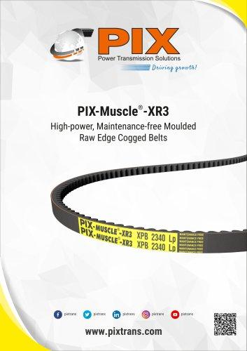 PIX-Muscle-XR3 Belts