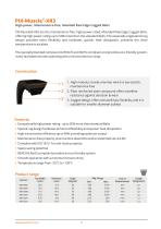 PIX-Muscle-XR3 Belts - 2