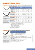 PIX-Power Transmission Belts - 11