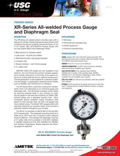 Type XR-Series All-Welded Process Gauge and Seal