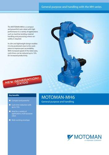 MH6_EN.pdf