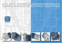 DELPHI series three-phase motors