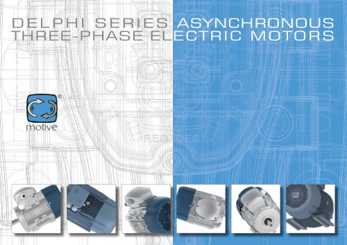 DELPHI three-phase electric motors