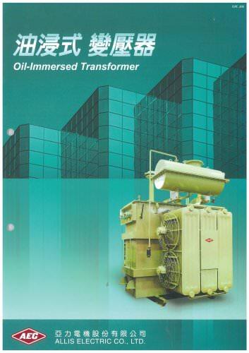 Oil Immersed Transformer