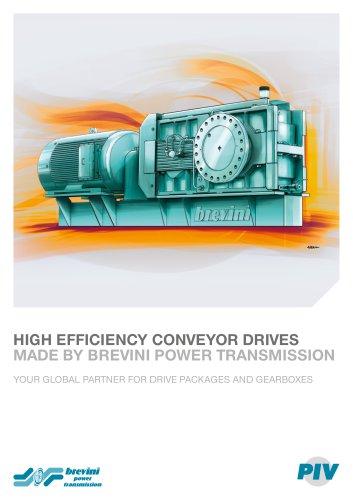 Conveyor Drives