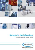 Vacuum in the laboratory