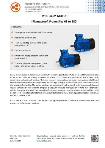 EX3M Flameproof Threephase Motor