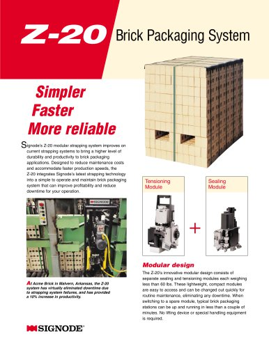 Z-20 Brick Packaging System