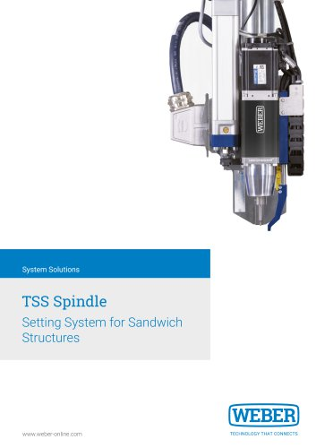 Thermal Setting-System for Multi-Layer Structures - TSS