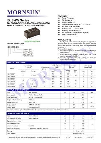 IB_S-2W / 2watt DC-DC converter