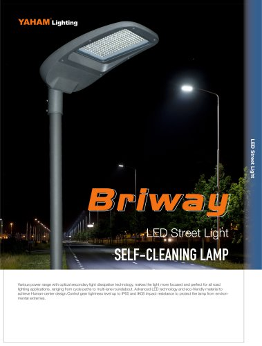 LED Street Light_Briway-print.pdf