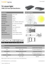 Tri street light 100W LED - 1