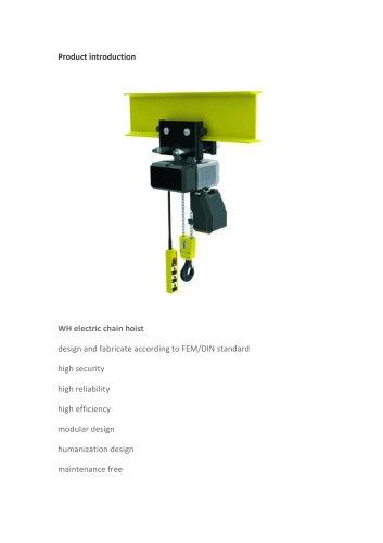WH Electric Chain Hoist
