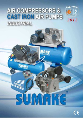 Air compressed cast iron air pumps industrial