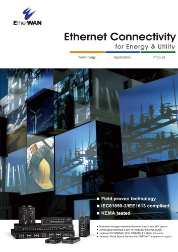 Ethernet Connectivity for Energy & Utility