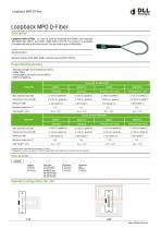 Loopback MPO Q-Fiber - 1