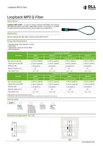 Loopback MPO Q-Fiber