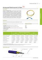Optic Fiber Technology - 11