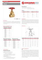 Gate valve . R55  series