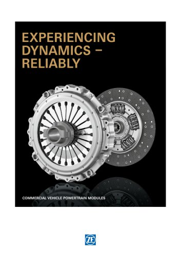 Experiencing Dynamics - reliably