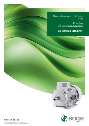 IE1 IEC standard induction motors