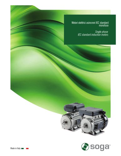Single phase IEC standard induction motors
