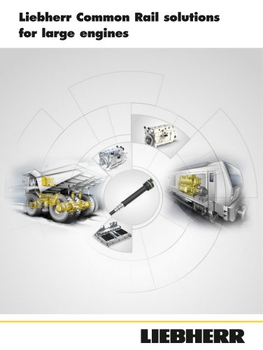 Liebherr Common Rail solutions for large engines