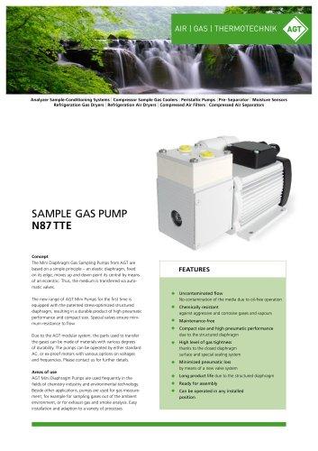 Sample Gas Pump N87 TTE