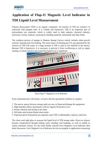 Application of Flap-11 Magnetic Level Indicator in TDI Liquid Level Measurement
