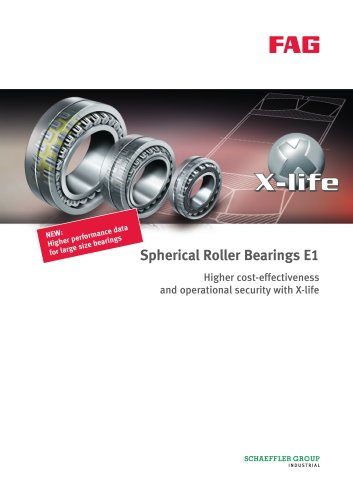 Spherical Roller Bearings E1