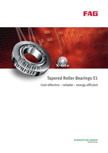 Tapered Roller Bearings E1