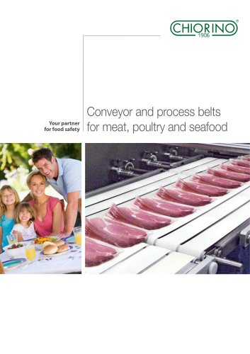 Conveyor and process belts for meat, poultry and seafood